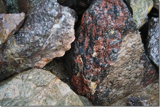 steen 1