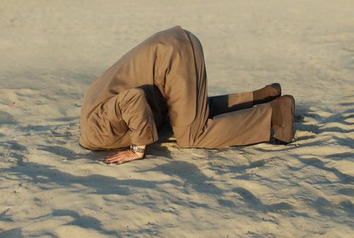 Kop in het zand steken